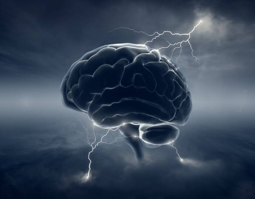 Aggression is dangerous for the brain – scientists
