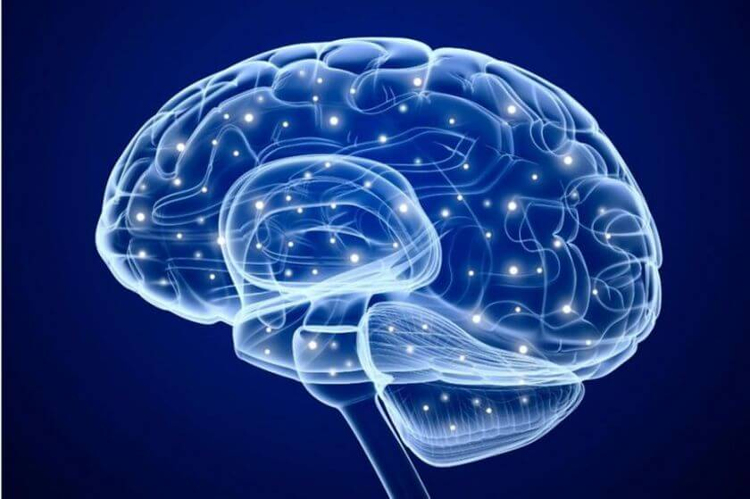 Scientists have learned to read minds