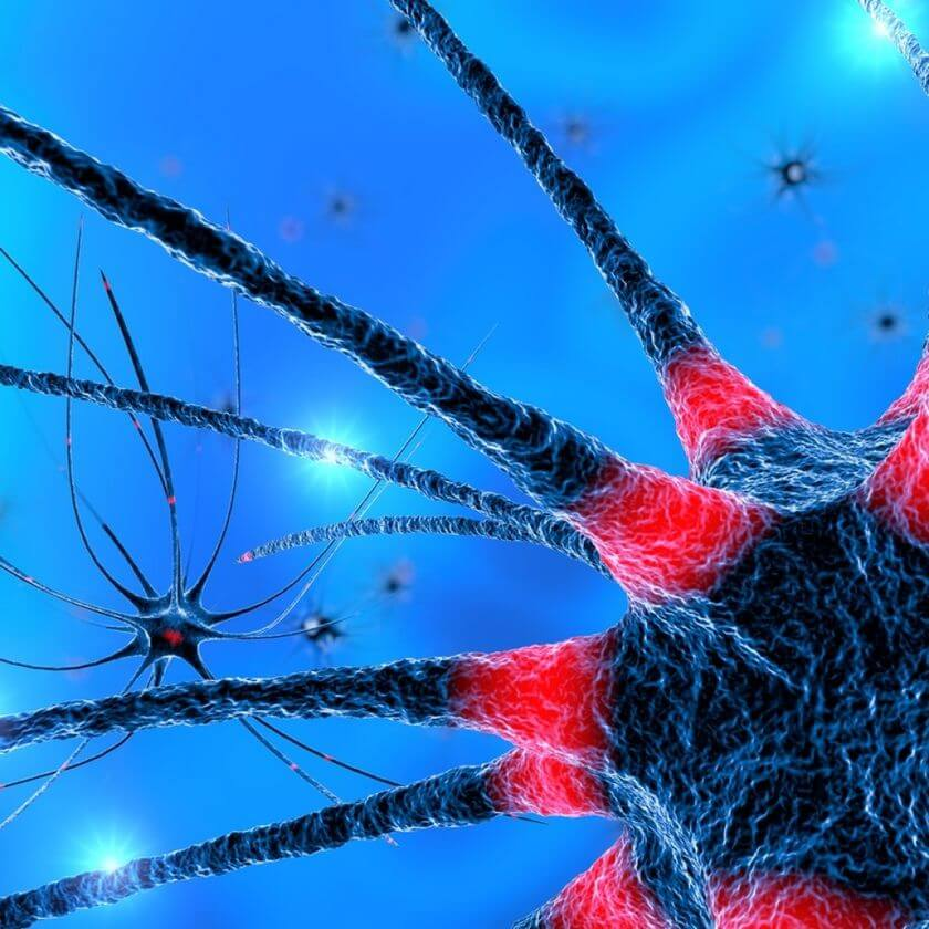 Scientists have obtained new data on Alzheimer disease