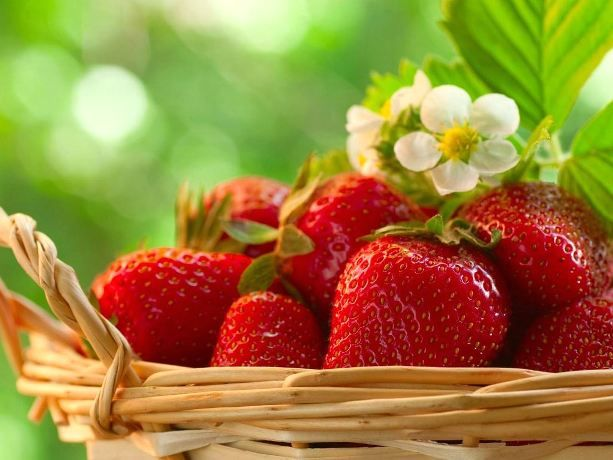 Strawberry: 5 useful properties